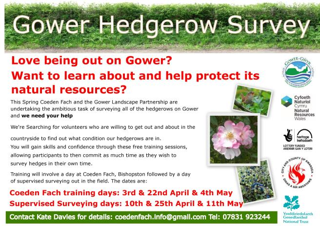 Gower Hedgerow Survey 2017MASTER.compressed-page-001.jpg